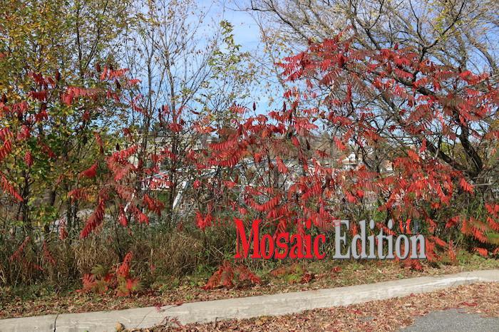 Bracebridge - Ontario - mosaicedition.ca-ea