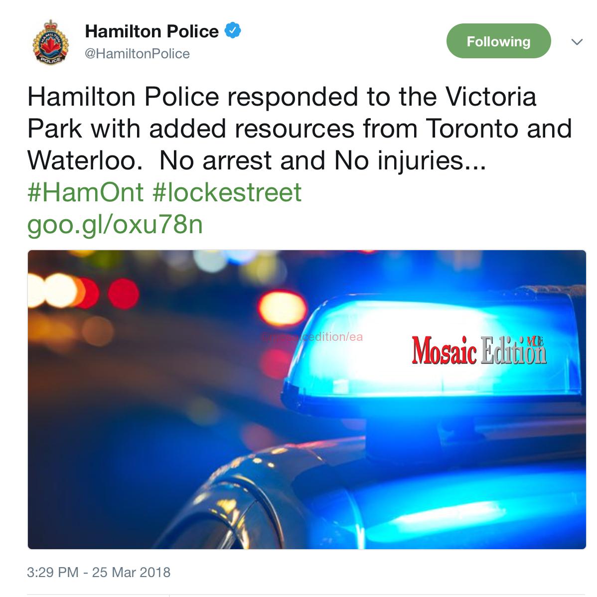Hamilton Victoria Park - no arrest and no injuries - screen shot - mosaicedition.ca-ea